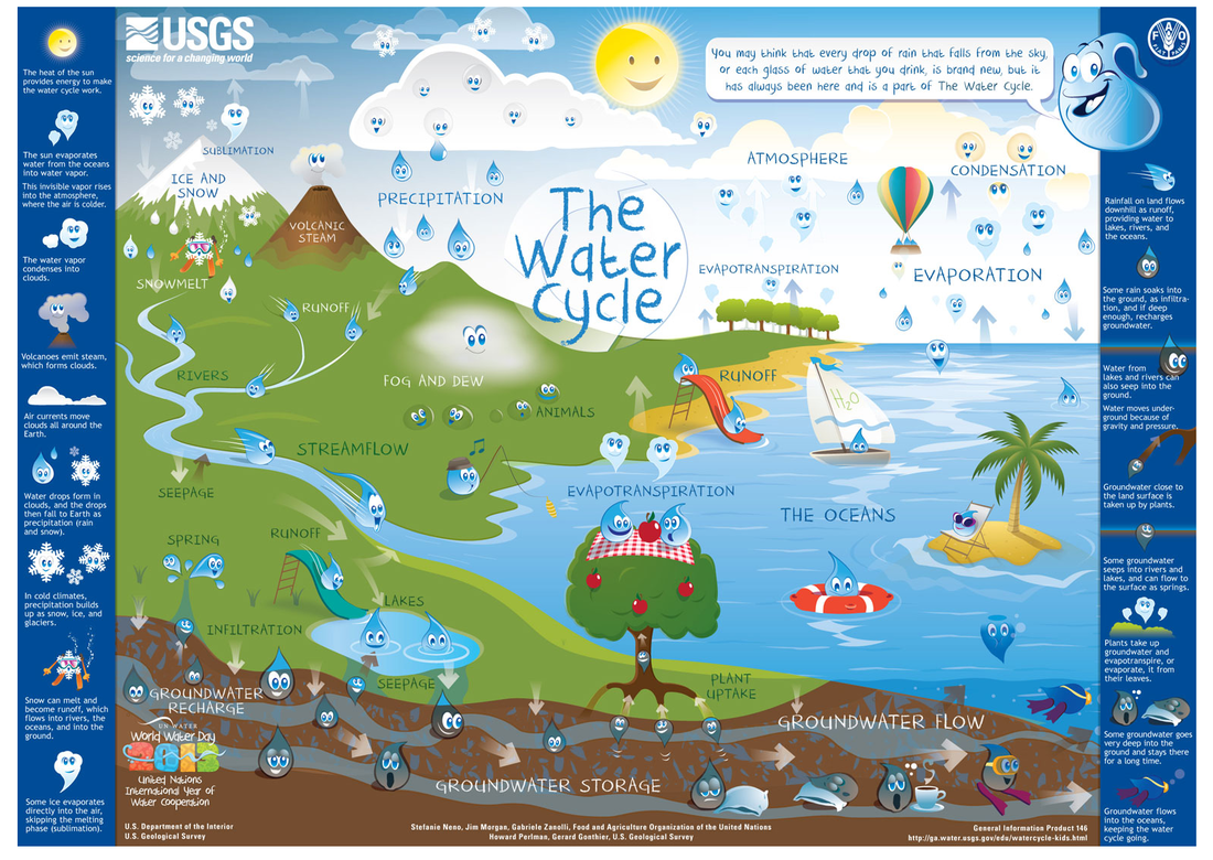 th grade the water cycle ms sylvester s science page click the link below to view an interactive diagram for the water cycle water usgs gov edu watercycle kids adv html